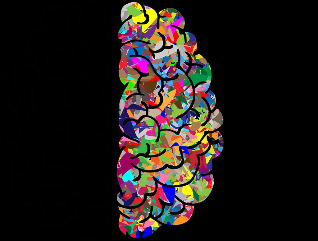 cerveau, esprit, a
